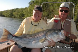 Casual nc fresh water striped bass fishing can suggest